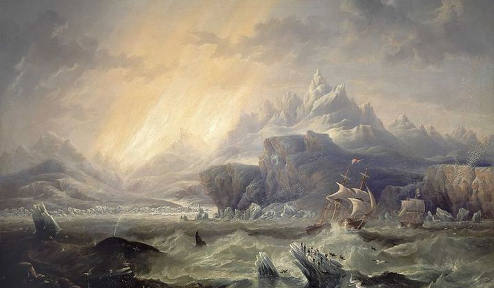 DNA Extracted From Franklin Expedition Sailors