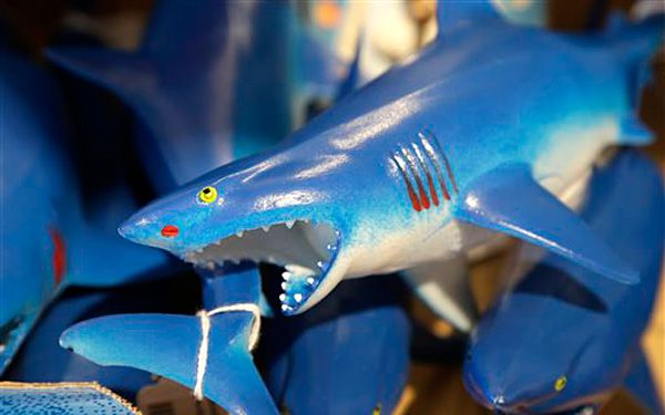 Sharks take bite out of tourists' wallets