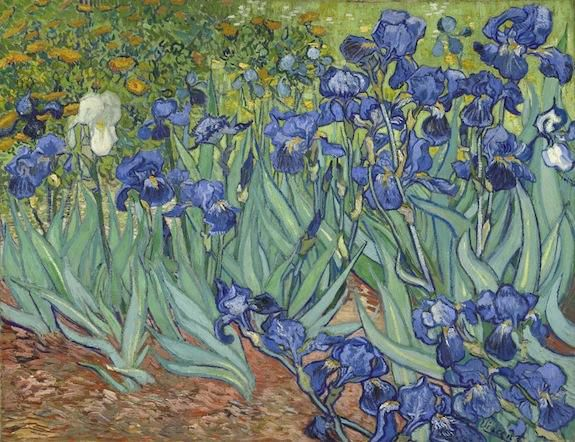 Vincent van Gogh , Irises. Dutch, 1889