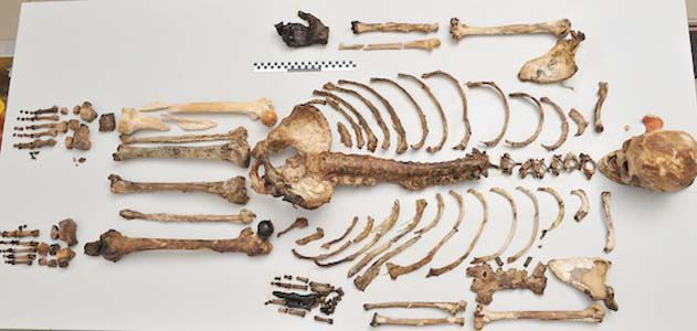 A new DNA analysis method reveals how ancient skeletons would have looked in the flesh.