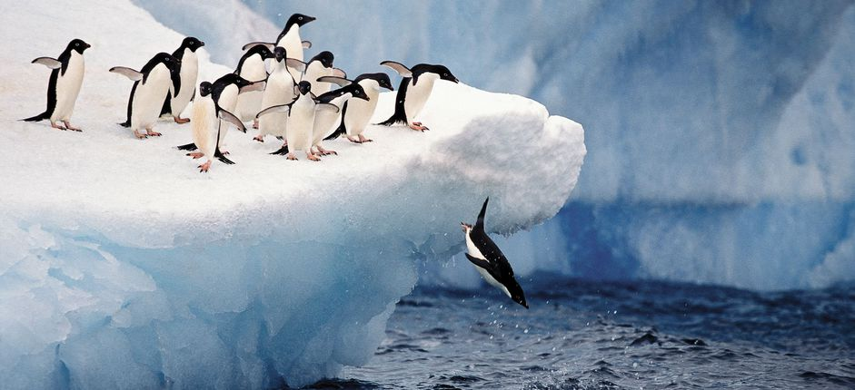 Expedition to Antarctica <p>See the White Continent in its unspoiled state&mdash;turquoise glaciers, bustling penguin rookeries, and breaching whales.</p>