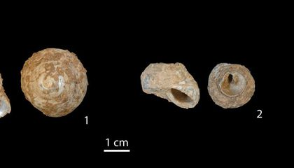 Tools Weren't Invented in Europe, They Were Carried There 50,000 Years Ago