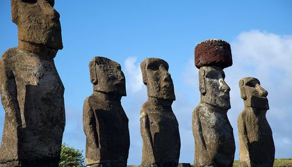 Easter Island Drug Makes Mice Happier, Smarter