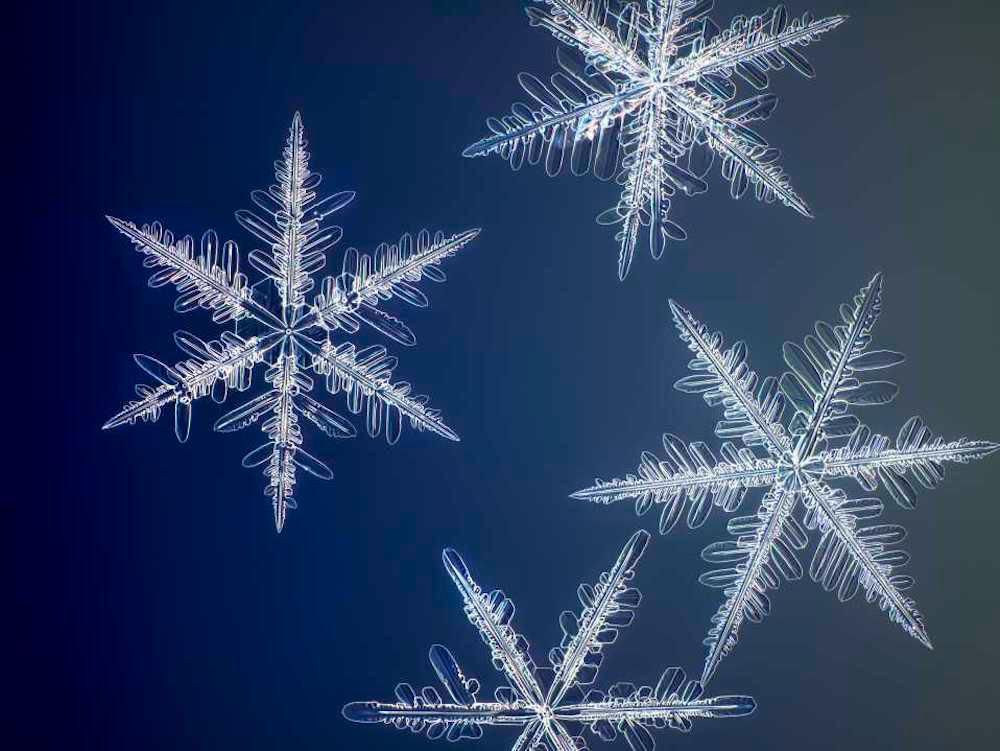 These Are the Highest Resolution Photos Ever Taken of Snowflakes