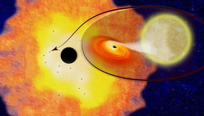 The Center of the Milky Way May Be Chock-Full of Black Holes