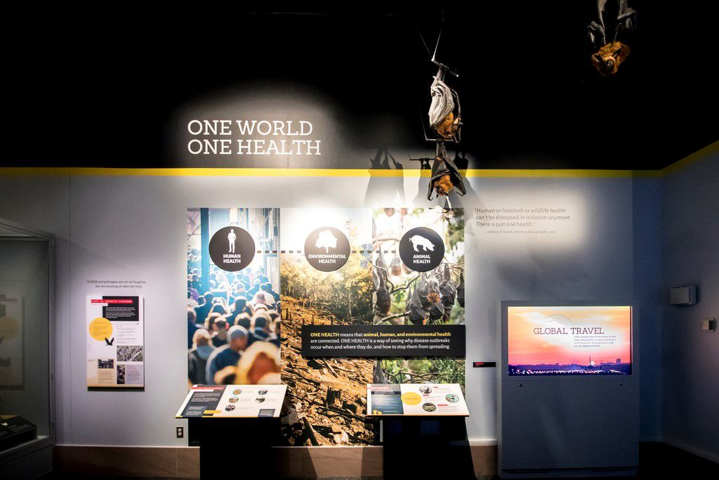 Museum exhibit display titled 'One World, One Health'