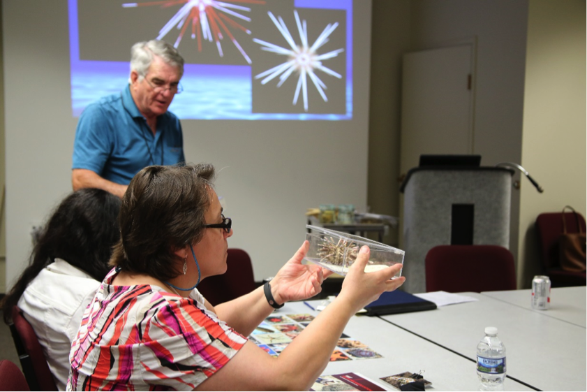 Dr. David Pawson interacts with attendees of SSEATs observing samples of echinoderms collected by Smithsonian scientists.