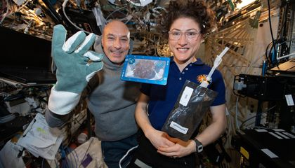 The First Cookies Baked in Space Have Returned to Earth