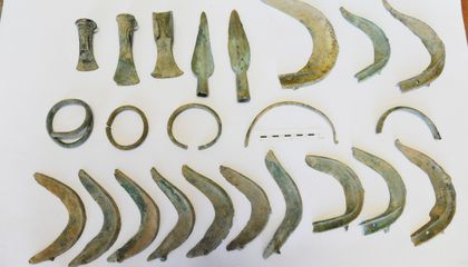 Who's a Good Archaeologist? Dog Digs Up Trove of Bronze Age Relics