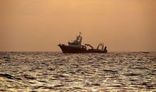 UN Begins Negotiating First Conservation Treaty for the High Seas