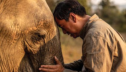 social media Smithsonian associate Aung Myo Chit soothes an elephant