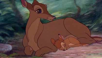 Man Convicted of Poaching Ordered to Watch 'Bambi' Monthly While in Jail