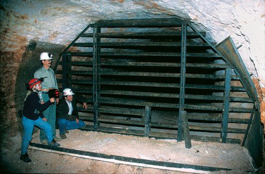 A Mine of Its Own | Science | Smithsonian Dig Out Bat Cost on looking out, drive out, digging out, powers out, your out,
