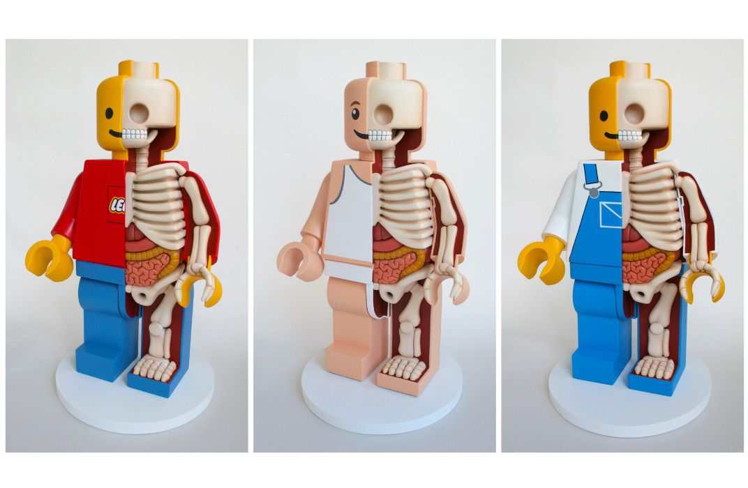 see the inner anatomy of barbie, mario and mickey mouse—bones, Skeleton