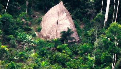 Drone Captures First Images of an Uncontacted Amazon Tribe