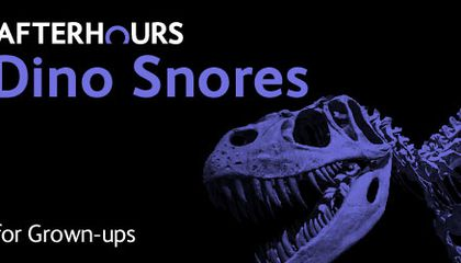 """""""Night At The Museum"""" For Adults Lets You Sleep Over With Dinosaurs"""