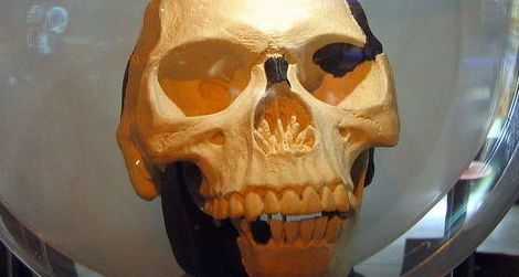 A replica of Piltdown Man
