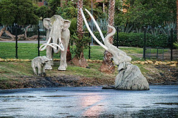 A fake mastodon fights for survival in a display at the La Brea tar pits.