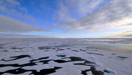 ice sheets cover  arctic waters on a sunny day