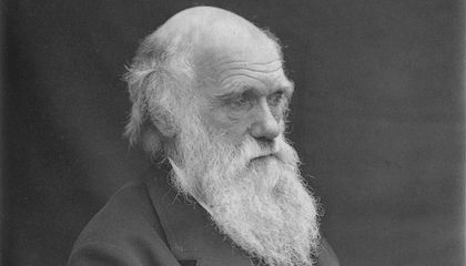 Did Charles Darwin Have Lyme Disease?
