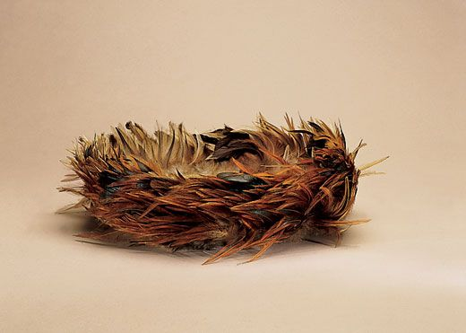91800684c A warrior's headdress of prized red-orange rooster feathers is thought to  have been worn either in combat or for ritual dances; it was collected in  1886 by ...