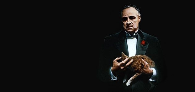 The Godfather Don Vito Corleone