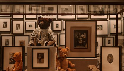 This Is What 3,000 Photos of Teddy Bears Look Like