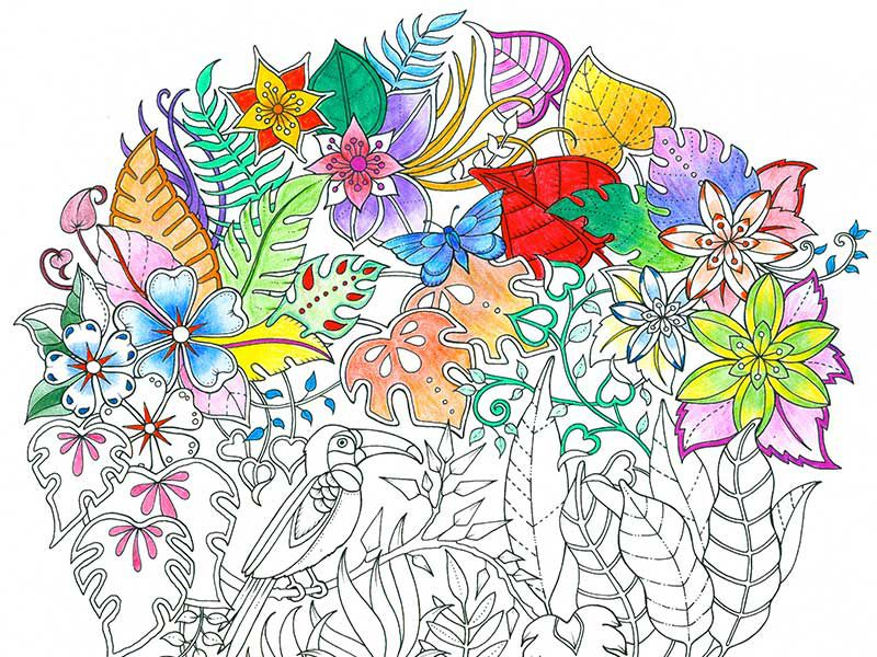 Johanna Basford Whose Fanciful Hand Drawn Illustrations Launched A Worldwide Craze Is Back With Flying Colors