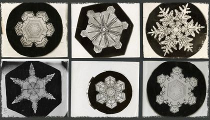 Why Scientists Find Snowflakes Cool