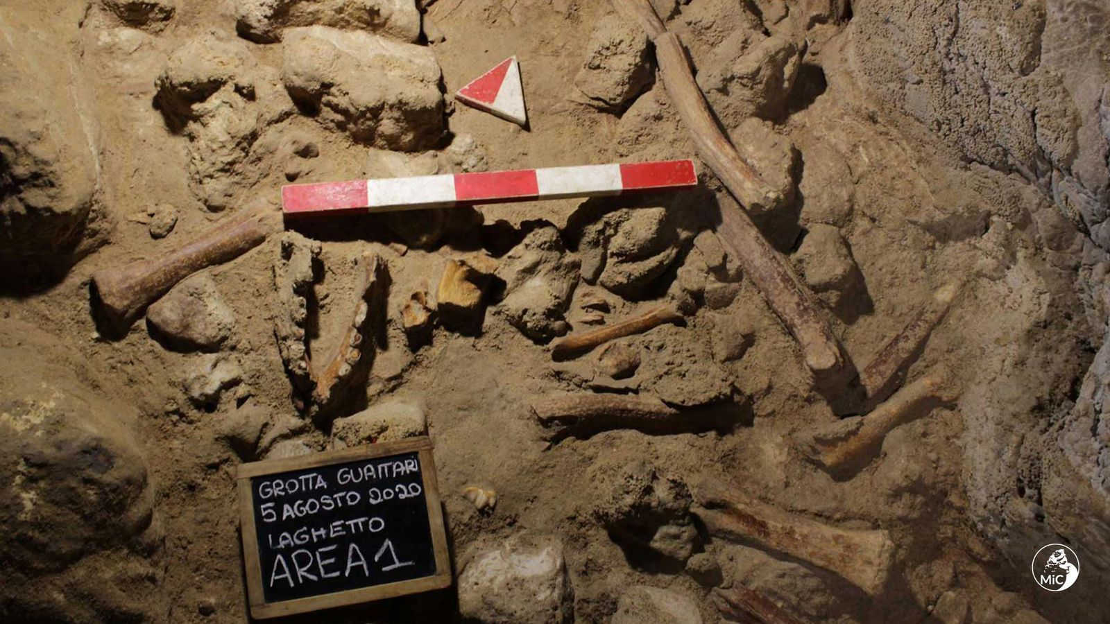 Remains of Nine Neanderthals Butchered by Hyenas Found in Italian Cave