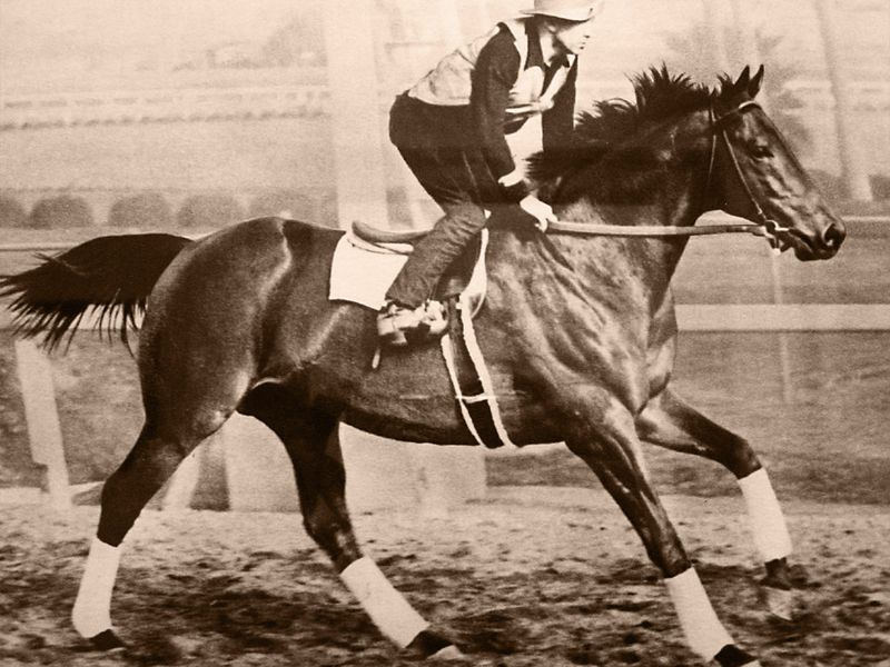 Betting on Seabiscuit | Arts & Culture | Smithsonian