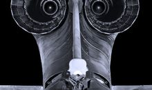F-4 or alien? Depends how you look at it.