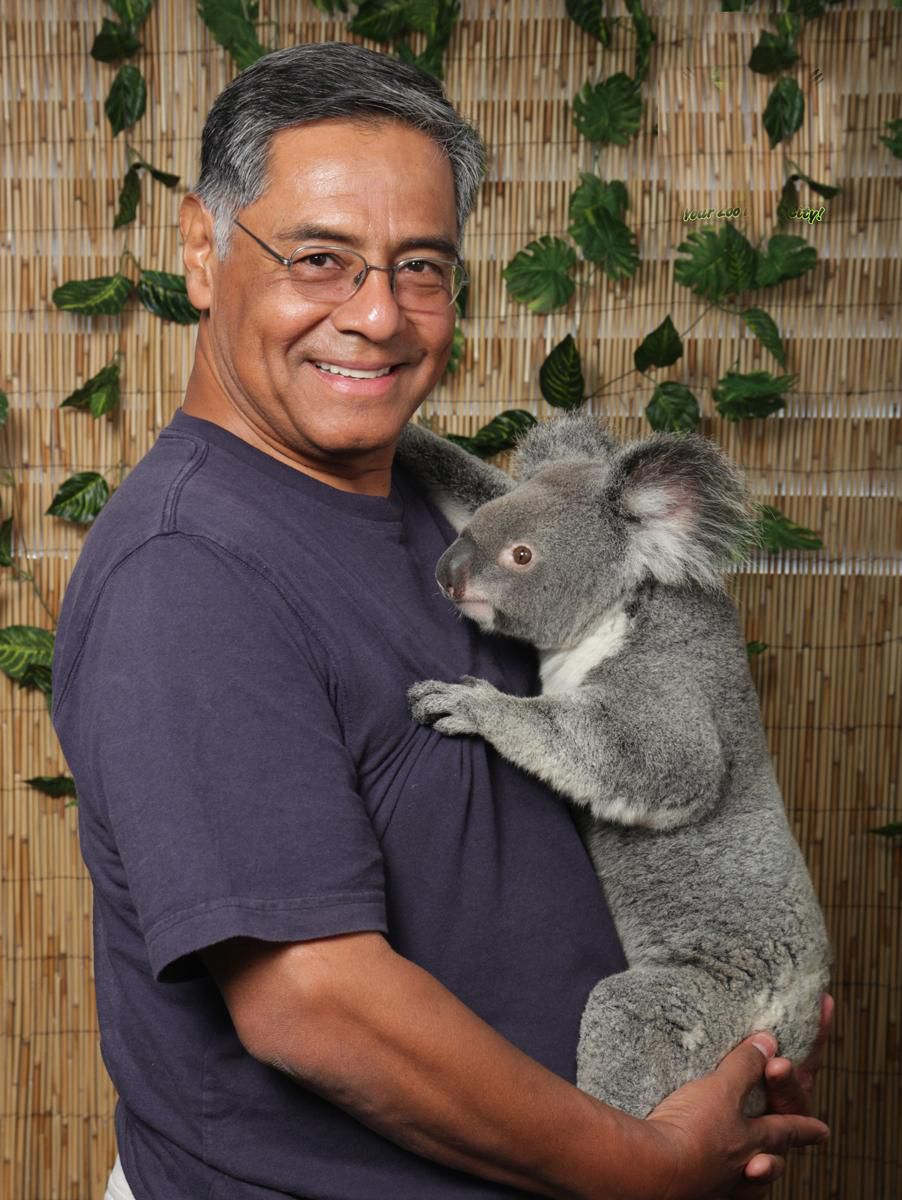 A Smithsonian Journeys traveler holding a Koala (Kirt Kempter)