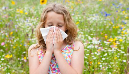 Got Allergies? Air Pollution Could Be to Blame