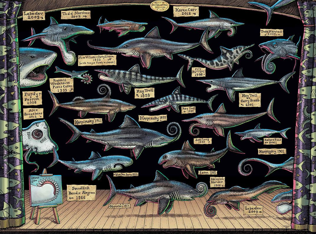 The Prehistoric Buzz Shark Has A Modern Day Hero In Artist Ray Troll Science Smithsonian Magazine