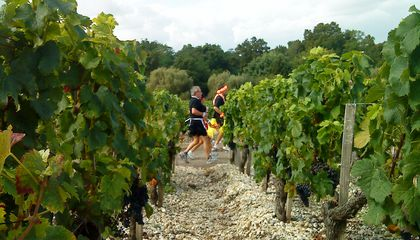 In the Marathon du Medoc, Run 26.2 Miles—While Stopping to Drink Wine Along the Way