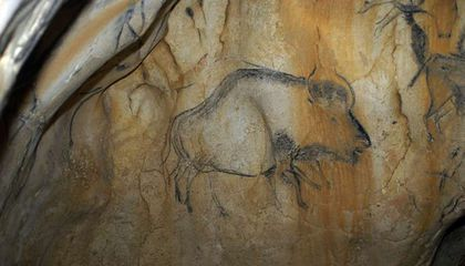 Cave Paintings Help Unravel the Mystery of the 'Higgs Bison'