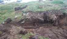 Storm Ophelia Unearthed an Ancient Skeleton in Ireland