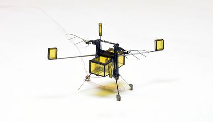 Watch This RoboBee Surge From Water to Sky