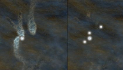 Stars Have Womb Siblings