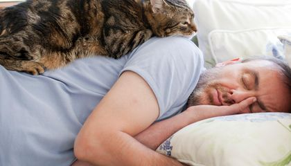 """""""Pink Noise"""" May Improve Sleep and Memory in Older Adults"""