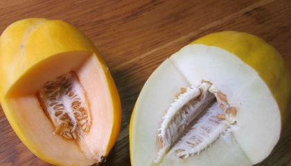 What to Do With Your Delicious Summer Melons