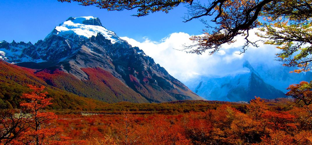 Blazing Fall Colors of the Andes.  Credit: Diaz Luciano
