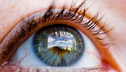 """How Forensic Scientists Once Tried to """"See"""" a Dead Person's Last Sight"""