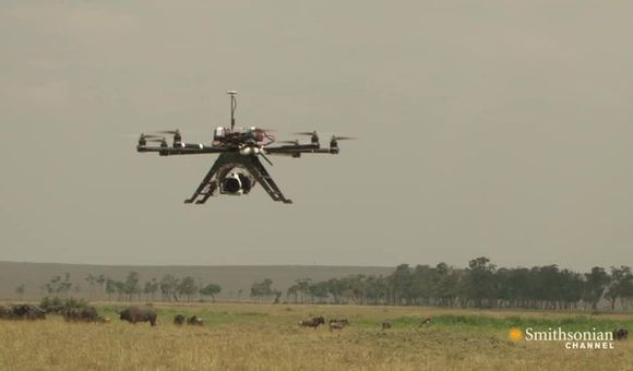 Preview thumbnail for video'Camera Drones Capture Africa's Wild Side