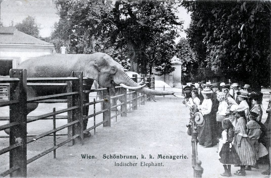 The Worlds Oldest Zoo Is A Modern Attraction With A Storied Past
