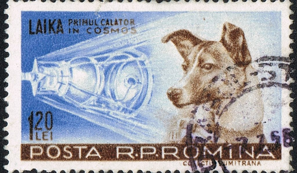 Between 1957 and 1987, Soviet allies, such as Romania (above), Albania, Poland and North Korea, issued Laika postage stamps.