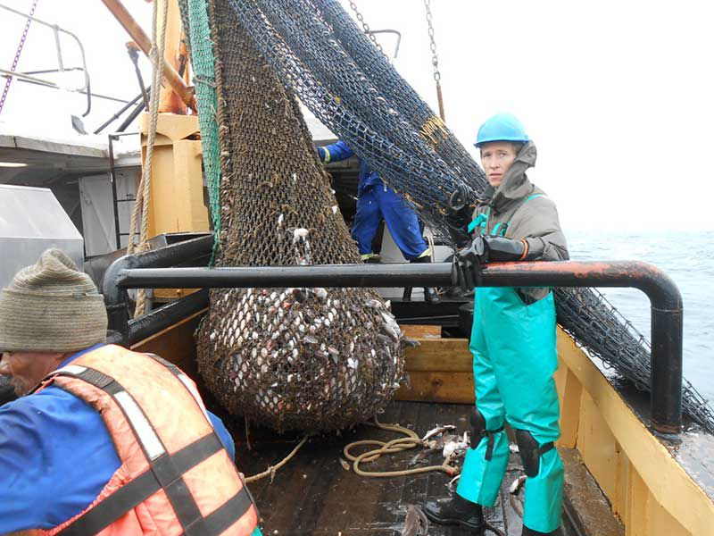 Trawl Net Recreation