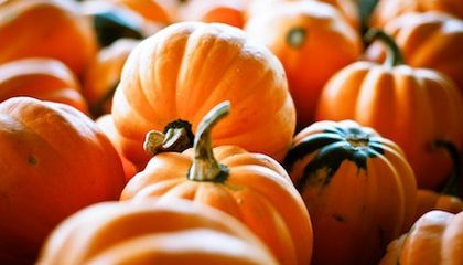Five Ways to Cook With Pumpkin