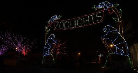 Come see the ZooLights holiday festival on January 1st